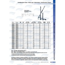 LEVE-PANNEAUX ELECT.DOUBLE 24V 2000/580